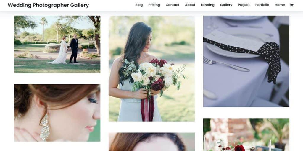 Divi WordPress Theme für Fotografie