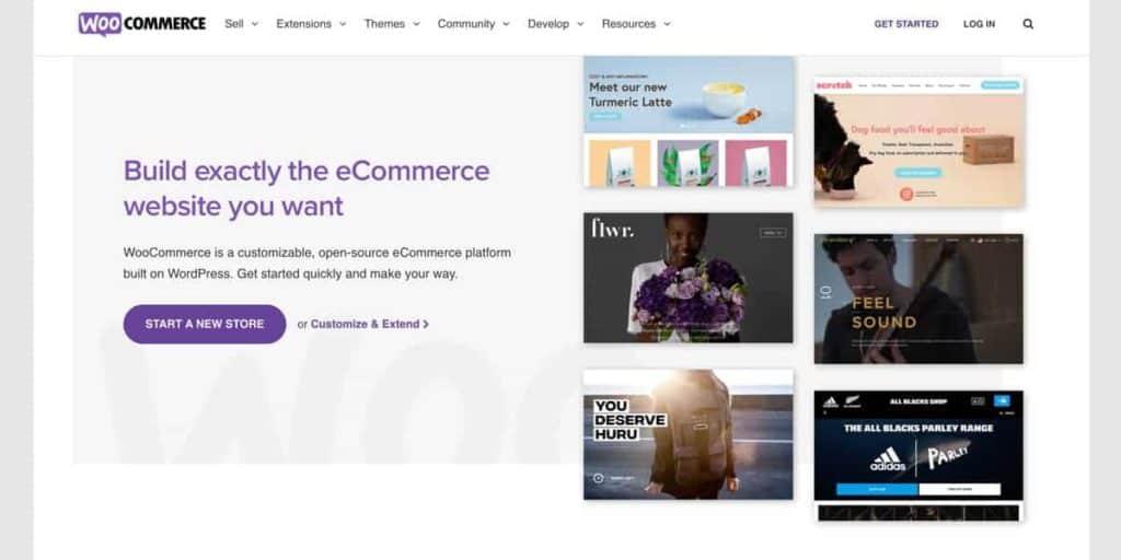 WooCommerce Shop Themes