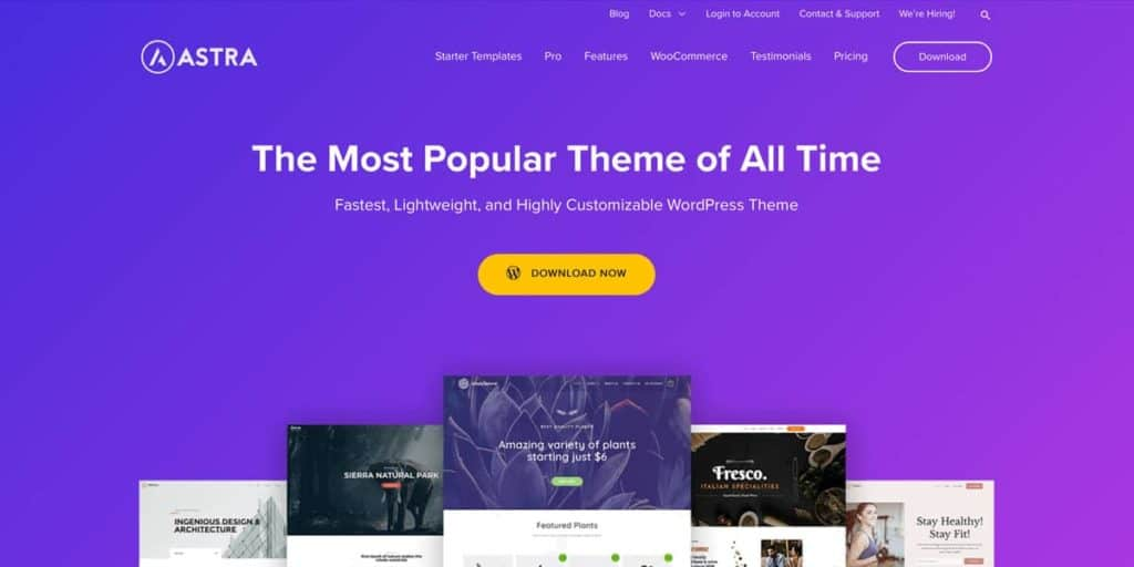 WP Astra: One of the best WordPress photography themes