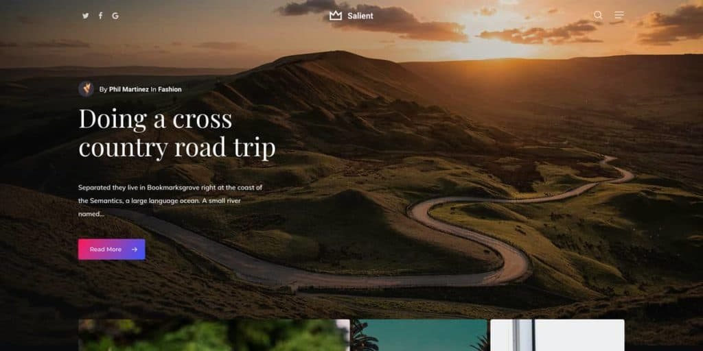 Salient is a great WordPress theme choice for lifestyle blogs
